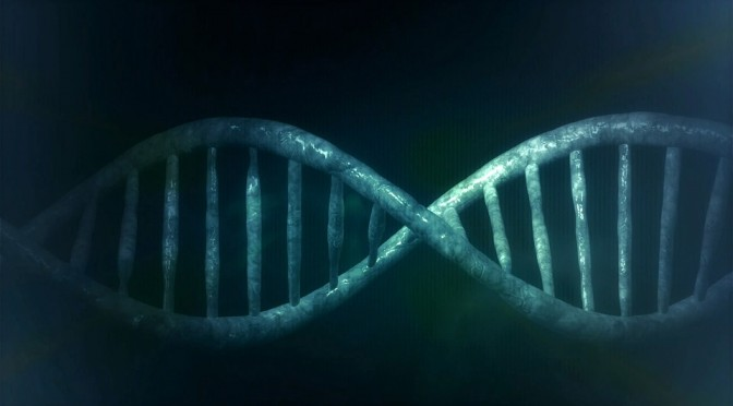 Genetyka w naszym codziennym życiu